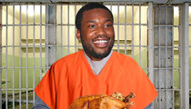 Meek Mill Still Hosting Thanksgiving Turkey Giveaway from Prison