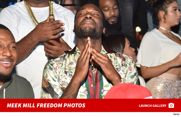 Meek Mill Strong Chance He's Getting Sprung ... According to DA