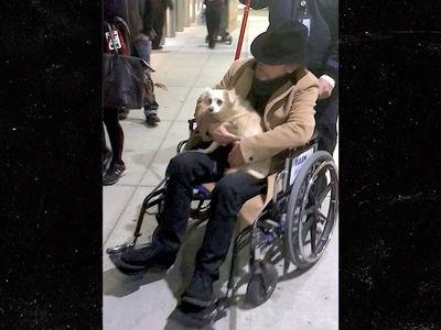 Mark Hamill Rolling in Wheelchair Before 'Star Wars: The Last Jedi' Premiere (UPDATE)