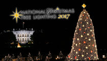 Trump's National Christmas Tree Lighting Cost Goes Up From Obama's