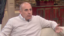 Meredith Vieira Once Called Out Matt Lauer for 'Huge Bag of Sex Toys'