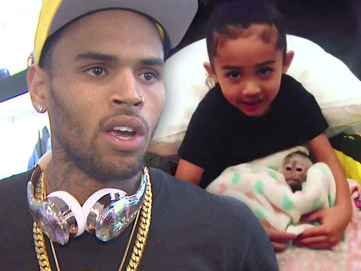 Chris Brown S Daughter Didn T Get The Monkey It S His Pet