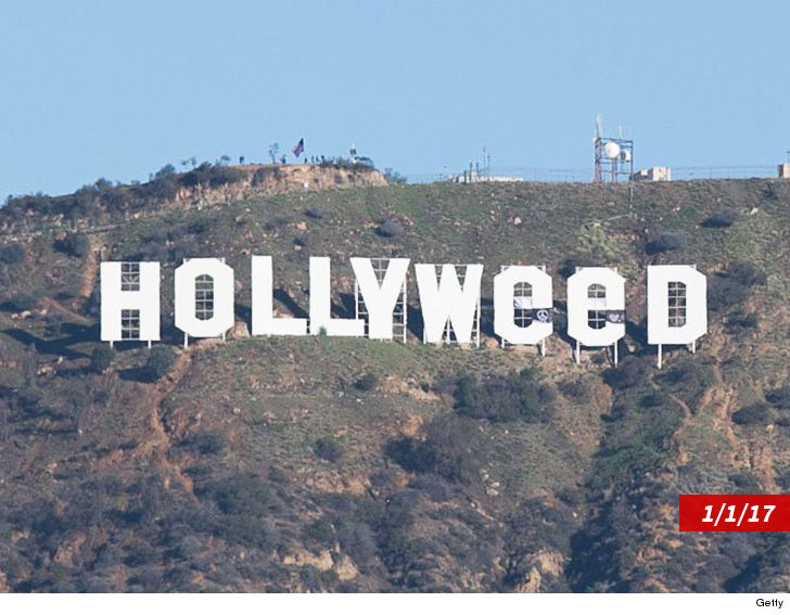 'Hollyweed' New Year's Eve Prank Unlikely, LAPD Ramping Things Up 2