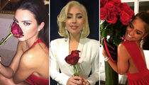Get 'Bachelor' Ready With These Rosie Star Photos!