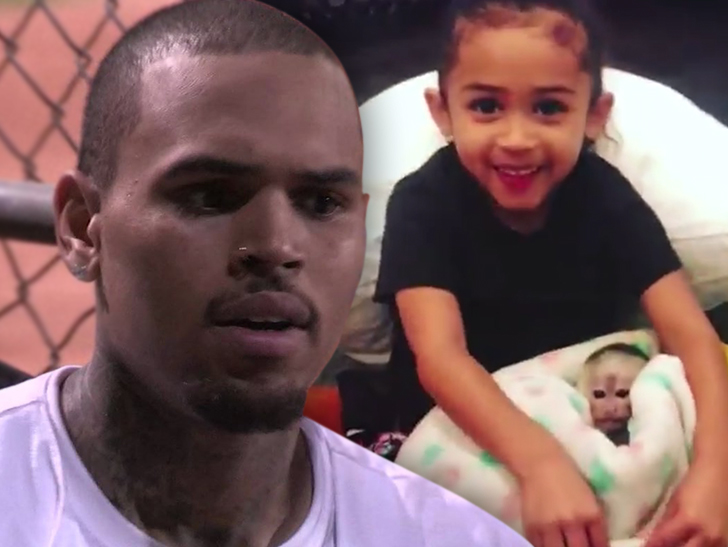 Could Chris Brown face jail time for having a pet monkey?