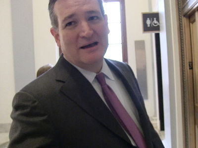 Ted Cruz Says The Internet's a Strange Place