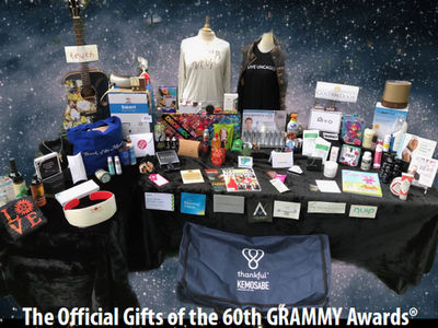 Grammys 2018 Gift Bag Perfect For Traveling Musician