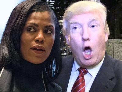 Omarosa Blasts President Trump and His Staff on 'Celebrity Big Brother'