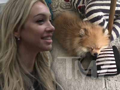 Corinne Olympios, New Owner of Adorable Mini Pooch
