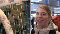 U.S. Olympian Saves Adorable Dog from S. Korea Butcher