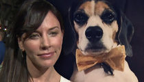 Krista Allen's Dog Still Needs Vet Care After Home Intruder Attack, Actress Moving