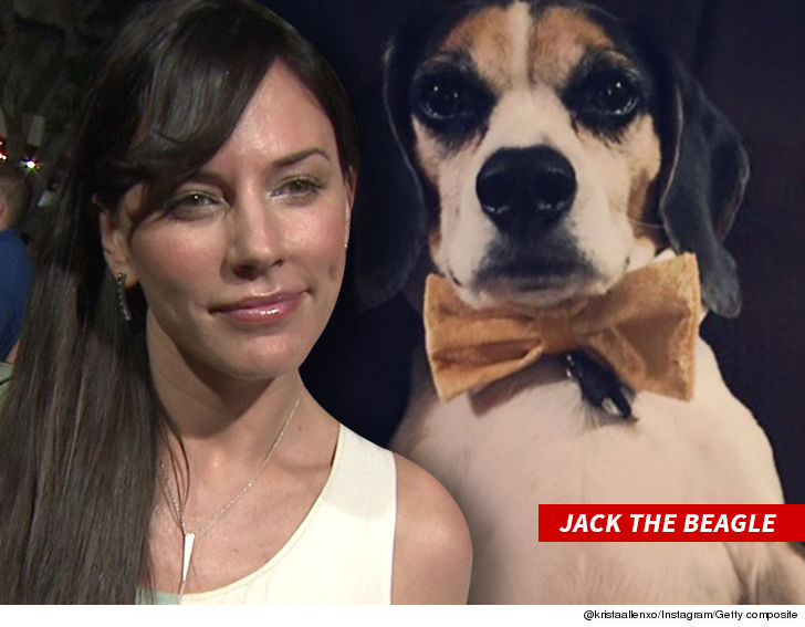 Krista Allen's scary encounter with a home intruder who injured her dog has caused her to feel unsafe in her home.