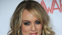 Stormy Daniels' Donation Money for Trump Lawsuit Raises Questions