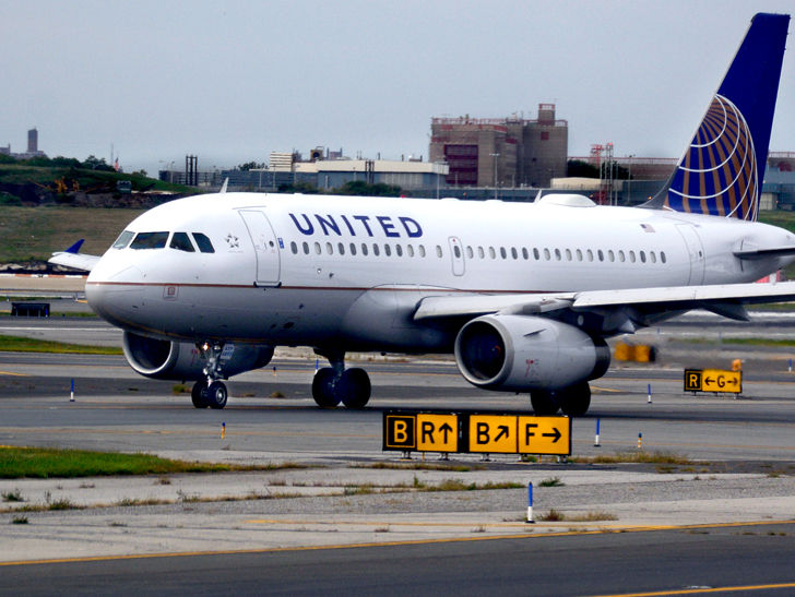 United Airlines Rolling Out New Pet Carrier Tags After Dog ...