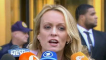 Stormy Daniels Blasts Michael Cohen as 'Trump's Fixer,' Vows to Defeat Him