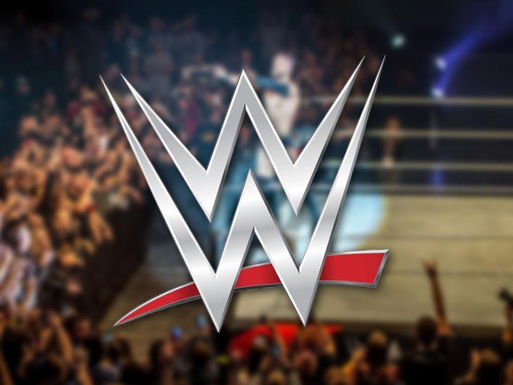 WWE Gets Restraining Order Against Poop Smearing Fan
